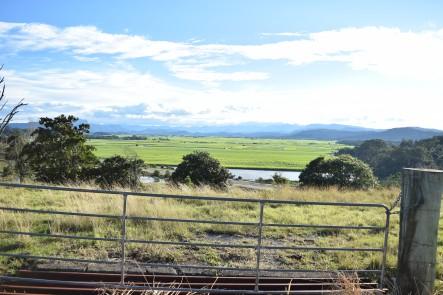 Hinterland near Brisbane QLD