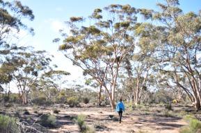 Karalee Rock and Dam, Western Australia