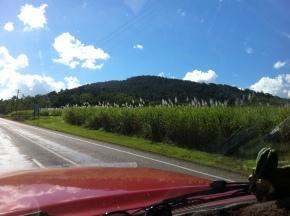 Somewhere in Queensland