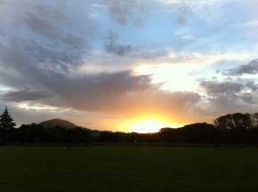 Sunset at the dog park, Dunedin